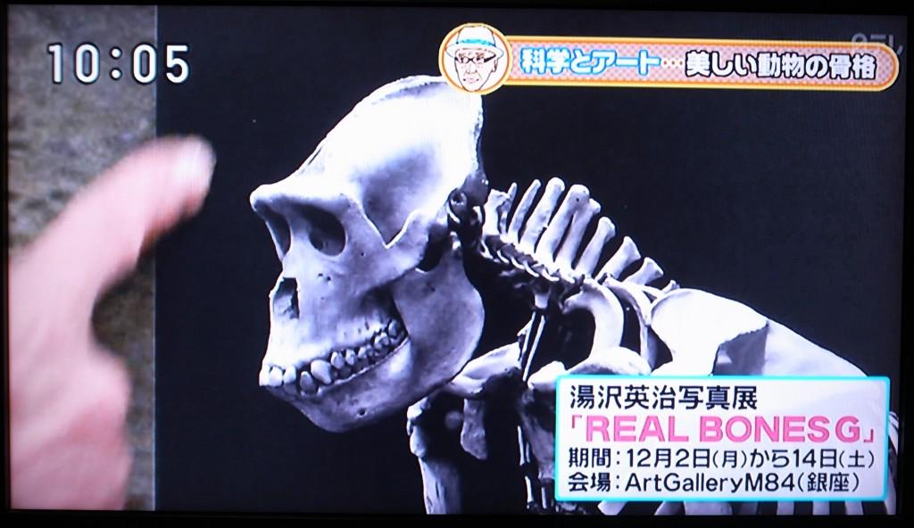 日テレ 放映