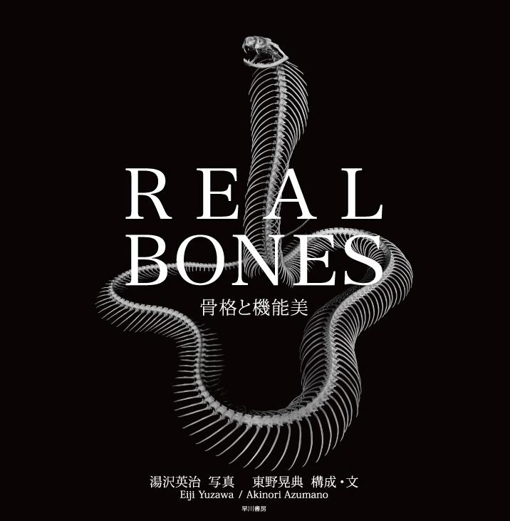 realbones1