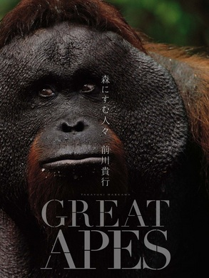 great-apes