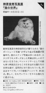 A猫 10月